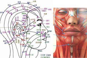 ぎっくり腰専門スマイルLABO/自律神経