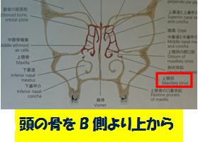 ぎっくり腰専門スマイルLABO/鼻の症状