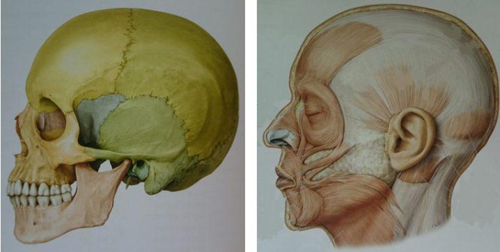 ぎっくり腰専門スマイルLABO/顎関節症