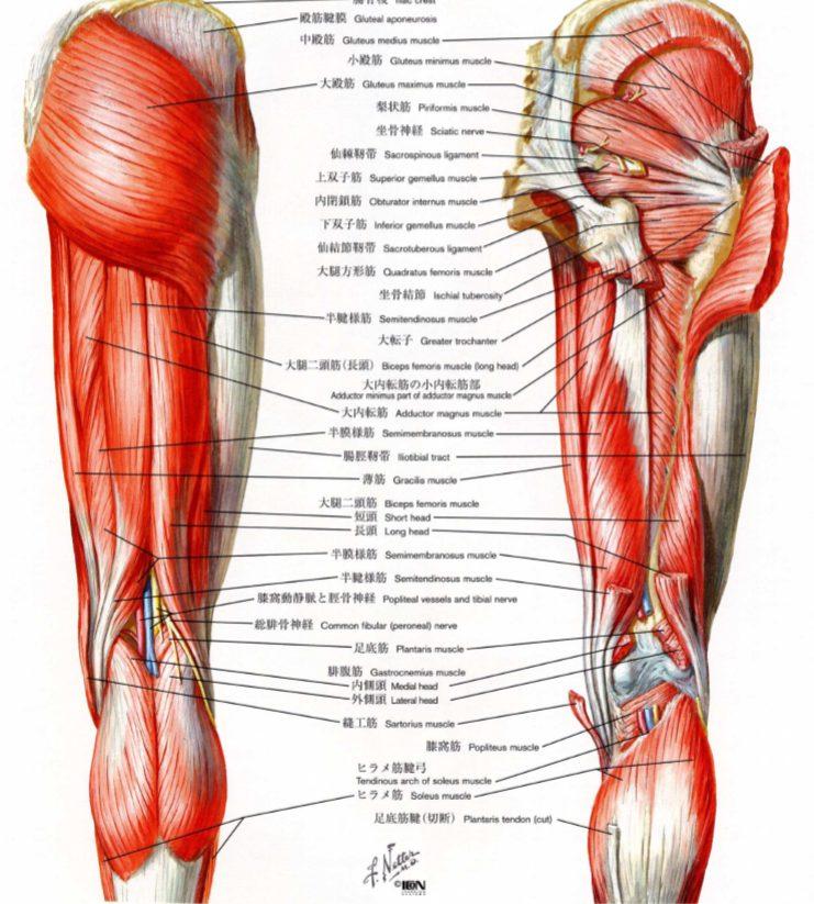 ぎっくり腰専門スマイルLABO/ぎっくり腰原因